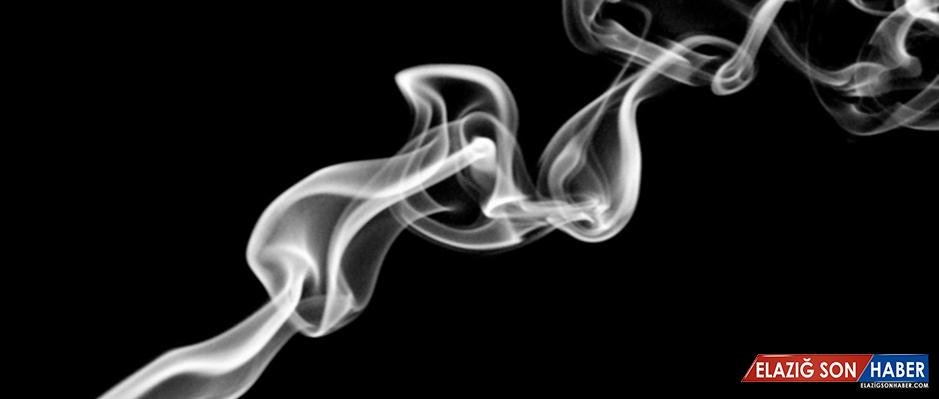 'Dünyada 6 milyon kişi tütüne bağlı nedenlerden hayatını kaybediyor'
