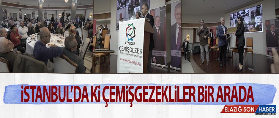 İstanbul'daki Çemişgezekliler Bir Araya Geldi