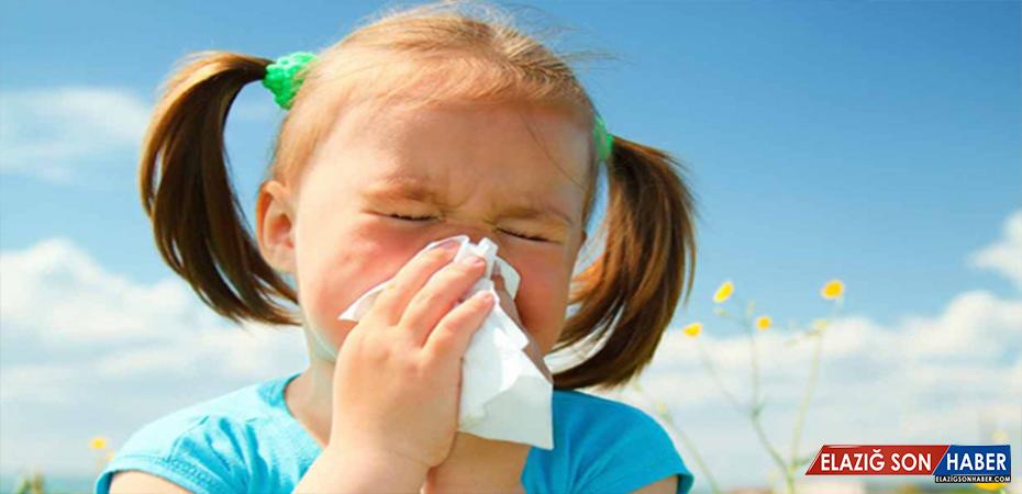 Sabah hapşırmaları bahar alerjisinin habercisi