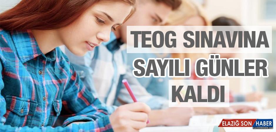 TEOG Sınavına Sayılı Günler Kaldı