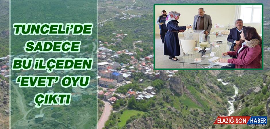 Tunceli'de Bir Tek Bu İlçeden Evet Oyu Çıktı