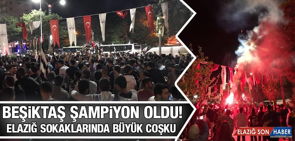 Elazığ'da Beşiktaş'ın Şampiyonluk Kutlaması