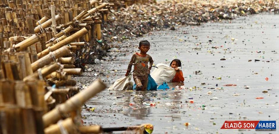 'Okyanuslarda 2050'de plastik çöpler balıklardan fazla olabilir'