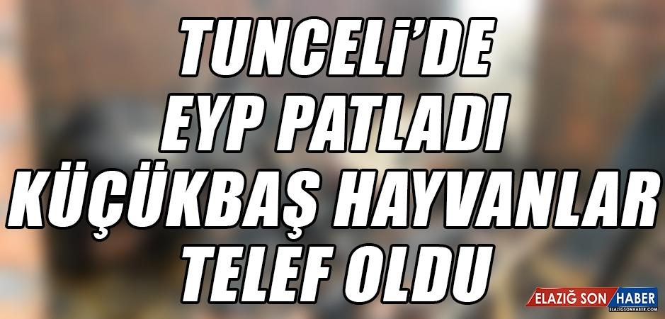 Tunceli'de EYP Patladı Küçükbaş Hayvanlar Telef Oldu