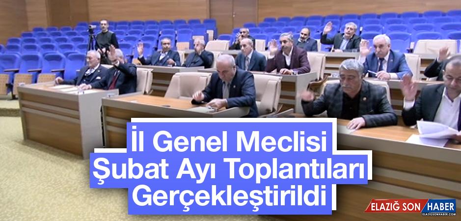 İl Genel Meclisi Şubat Ayı Toplantıları Devam Ediyor