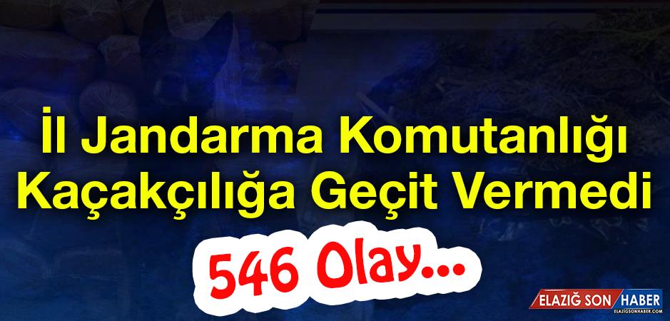 Jandarma, 546 Kaçakçılık Olayına Müdahale Etti