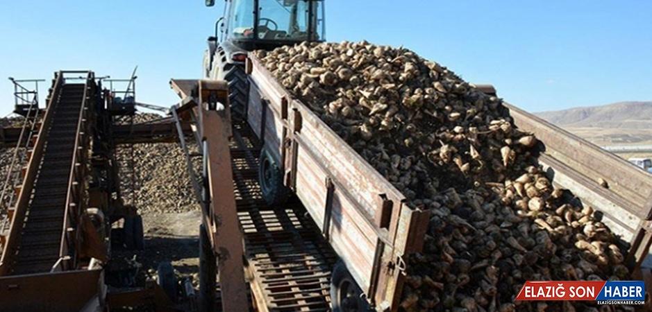 3 Şeker Fabrikasının Özelleştirme İhaleleri Yapıldı