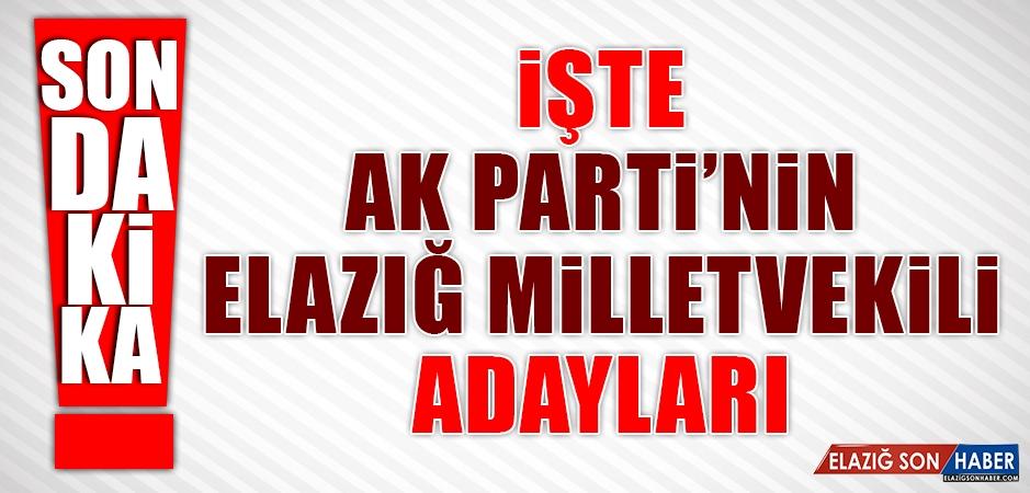 İşte AK Parti'nin Elazığ'daki Listesi