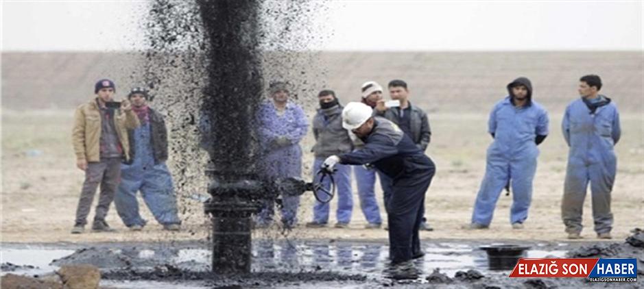 TPAO, 8 Ayrı Noktada Petrol Arayacak