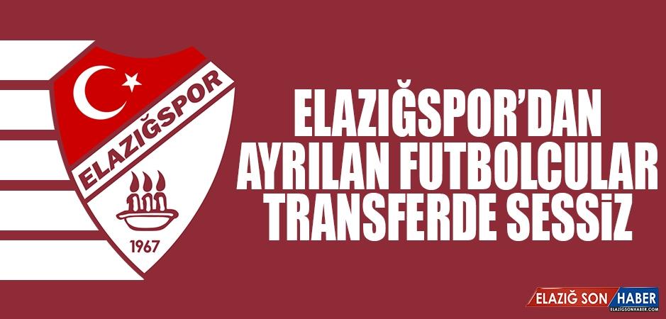 Ayrılan Futbolculardan Sadece Alpaslan Öztürk Göztepe'ye İmza Attı