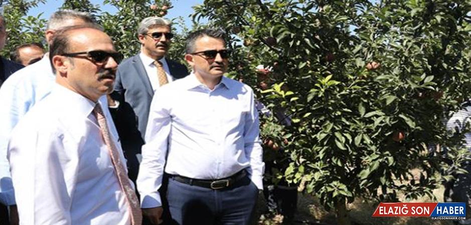 Köylülerin Meyve Bahçesi Projesi Bakan Pakdemirli'den Övgü Aldı