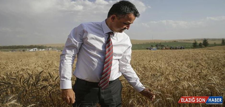 Tarım Ve Orman Bakanı Bekir Pakdemirli: Tarımı Daha İyi Yerlere Götüreceğiz