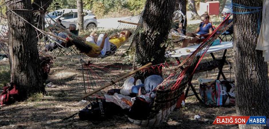 "Bursa'da ""Hamak Festivali"" Düzenlendi"