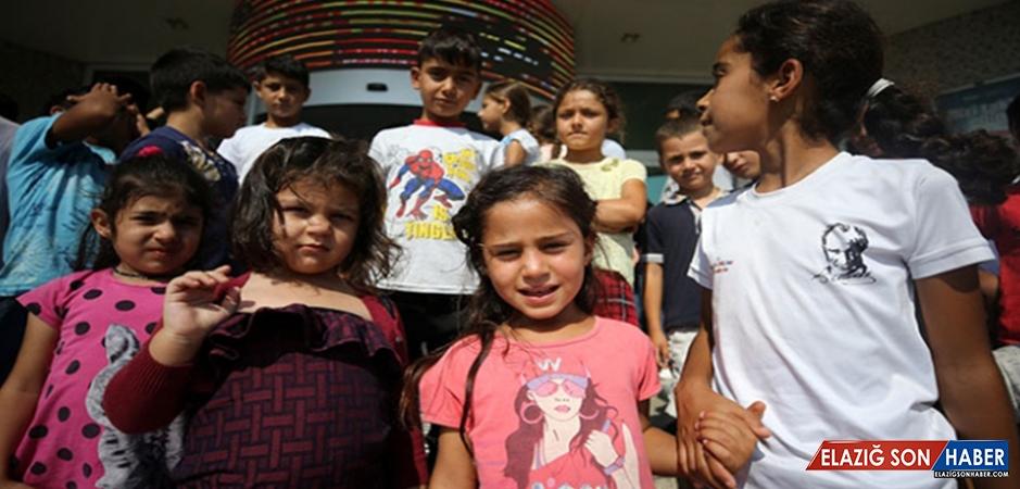 Çocuklar Fındık Tarlasından Alınıp Sinemaya Götürüldü