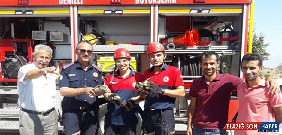 Denizli'de Boruya Sıkışan 4 Kaplumbağayı İtfaiye Ekipleri Kurtardı