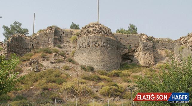 Amida Höyük'te arkeolojik kazı çalışmaları başladı
