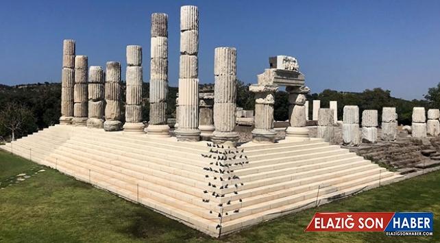 Apollon Tapınağı basamaklarına 73 'mitolojik fare' yerleştirildi