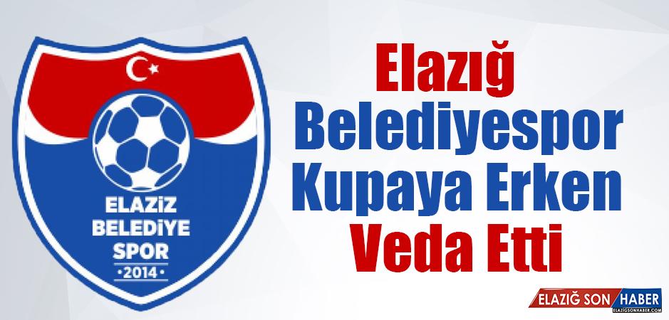 Diyarbekirspor 2-0 Elaziz Belediyespor
