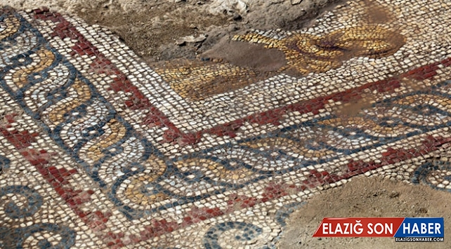 Nysa Antik Kenti'nde 25 metre uzunluğunda taban mozaiği bulundu