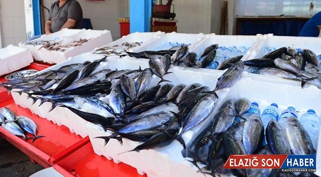 Olumsuz hava balık fiyatlarını yükseltti