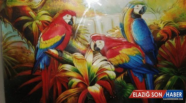 Resim öğretmeninden üç boyutlu rölyef sergisi