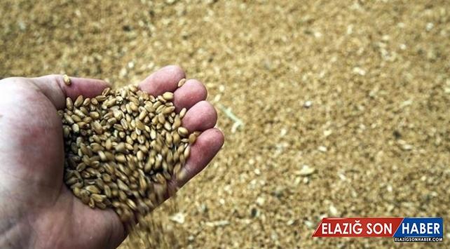 """Tarım ve Orman Bakanlığı'ndan """"buğday stoku"""" açıklaması"""