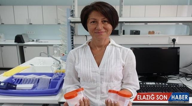Türk bilim insanlarından kaslara iyi gelecek çalışma