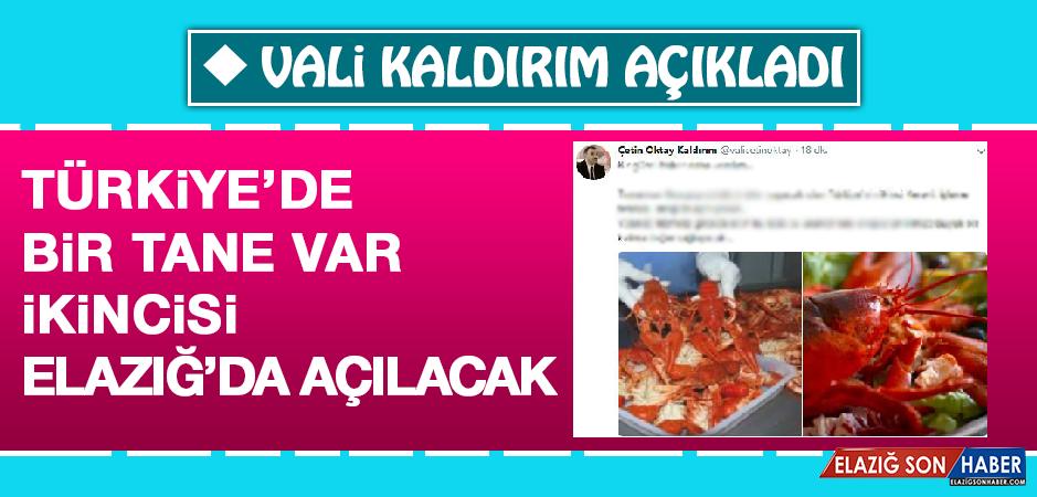 VALİ KALDIRIM AÇIKLADI!