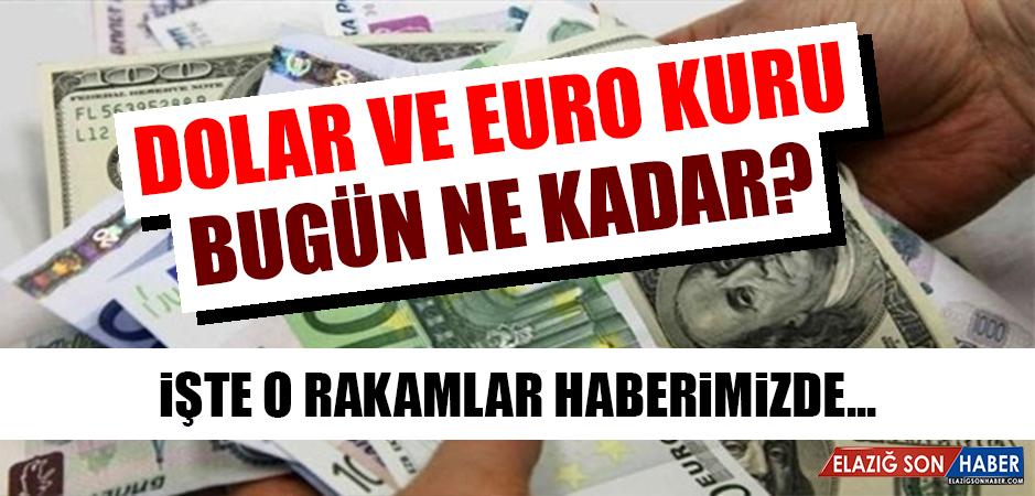 12 Ekim Dolar ve Euro Fiyatı