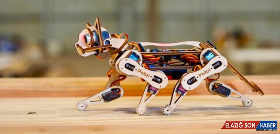 Açık Kaynak Kodlu Akıllı Robot Kedi: Nybble