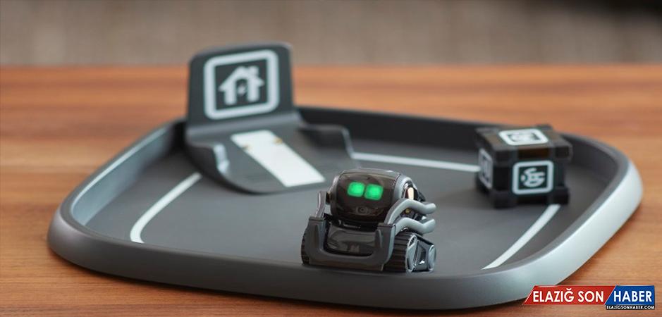 Anki'nin Sevimli Robotu Vector, Gizemli Bir Alexa Uyumluluğuna Sahip