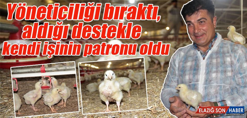 Bankacılığı Bıraktı Tavuk Çiftliği Kurdu