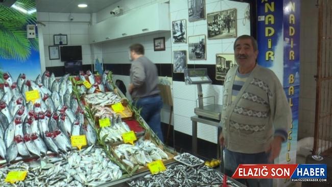 Çanakkale'de balık tezgahları hareketlendi