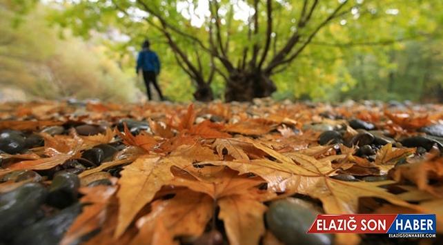 """Sonbaharda tabloları aratmayan manzarasıyla """"Arapgir"""""""