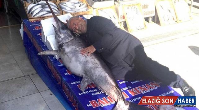 2 metrelik kılıç balığı ağlara takıldı