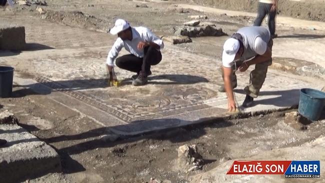 Osmaniye'de ortaya çıkarılan bin 500 yıllık mozaikler Roma dönemine ışık tutuyor
