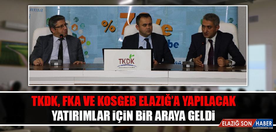 TKDK, FKA ve KOSGEB Elazığ'a Yapılacak Yatırımlar İçin Bir Araya Geldi