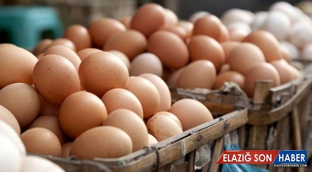 Yumurta ihracatında rekor artış yaşandı