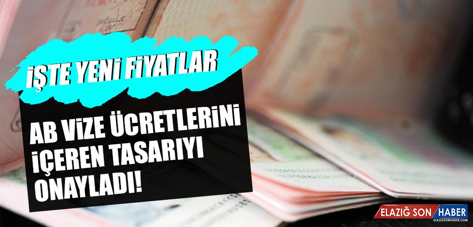 AB vize ücretlerini içeren tasarıyı onayladı!