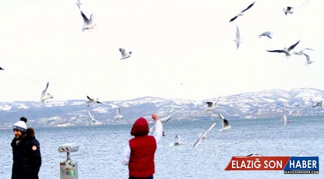 Doğu Marmara'nın turizm gözdesi Sapanca tatilcileri bekliyor