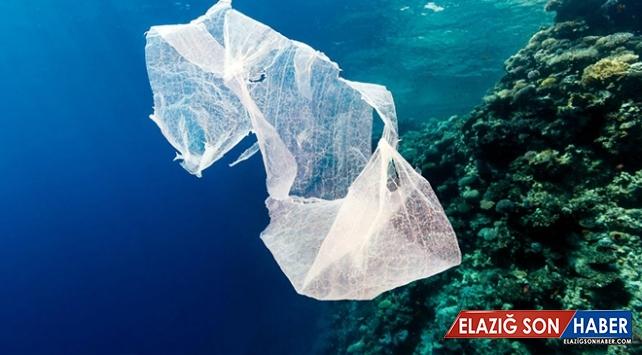 Ücretli plastik poşet birçok ülke tarafından tercih ediliyor