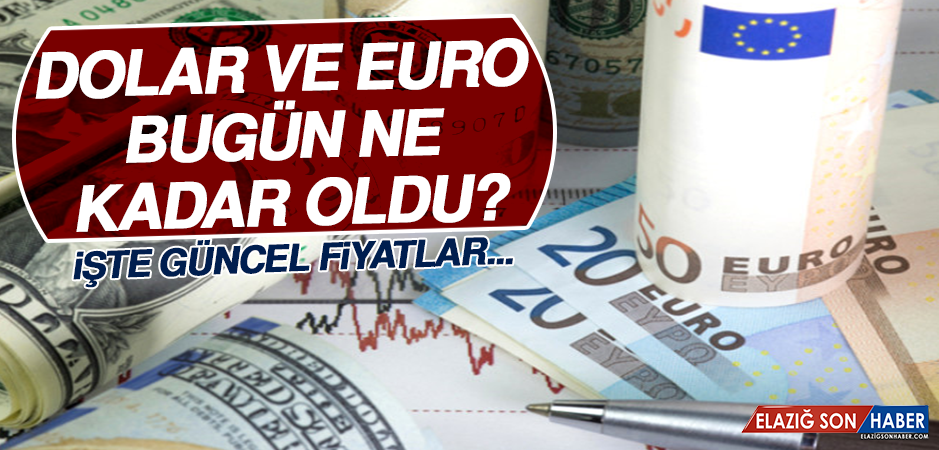 11 Şubat Dolar ve Euro Fiyatları