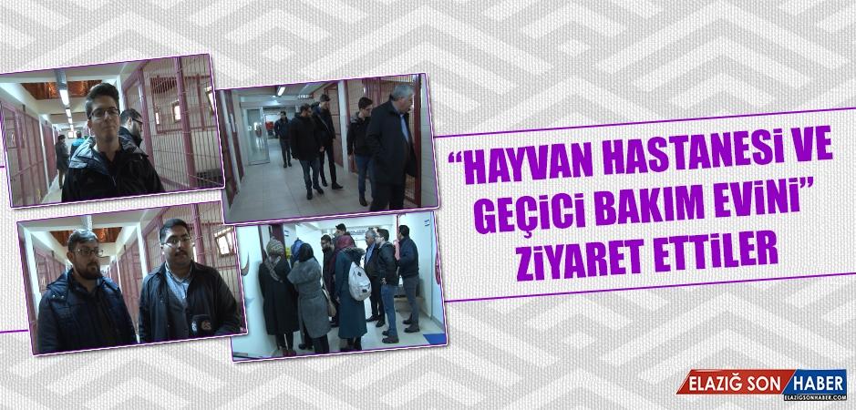 """""""Hayvan Hastanesi ve Geçici Bakım Evini"""" Ziyaret Ettiler"""