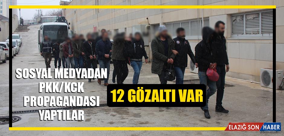PKK/KCK Propagandası Yapan 12 Kişi Gözaltına Alındı