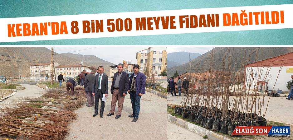 Keban'da 8 Bin 500 Meyve Fidanı Dağıtıldı