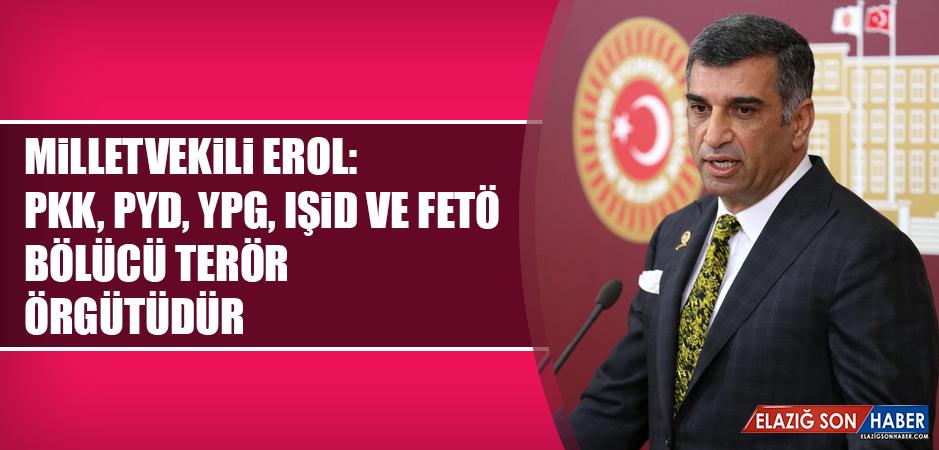 Milletvekili Erol: PKK, PYD, YPG, IŞİD VE FETÖ bölücü terör örgütüdür