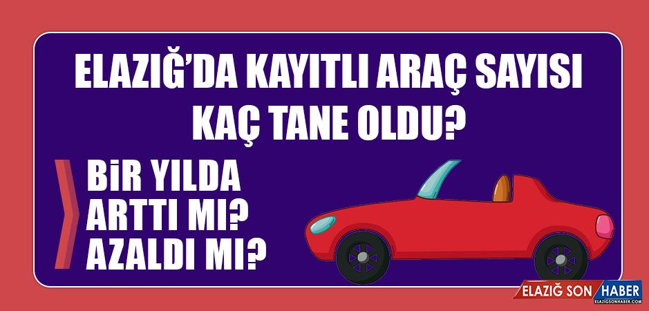 Elazığ'da kayıtlı araç sayısı kaç tane oldu?