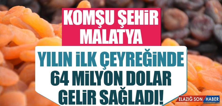 Malatya 64 Milyon Dolar Gelir Sağladı