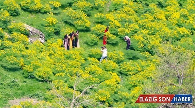 Terörden temizlenen Çukurca'da doğal güzellikler fotoğraflandı