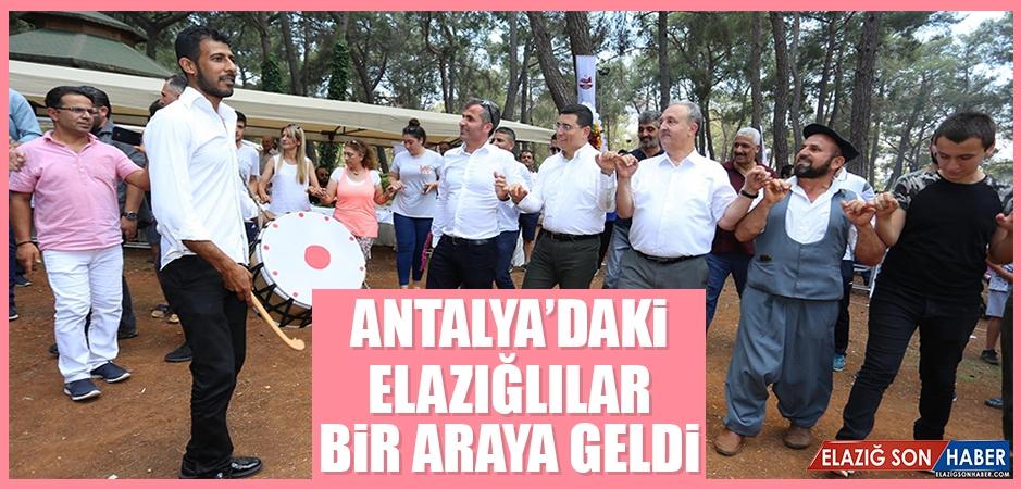 Antalya'daki Elazığlılar Bir Araya Geldi